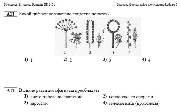 Диагностические Работы по Математике 6 Класс Статград
